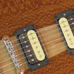 """オリジナルギター""""ARYNE""""や、BR-PAFなど、ブリルベイトオリジナル賞品のご紹介です"""